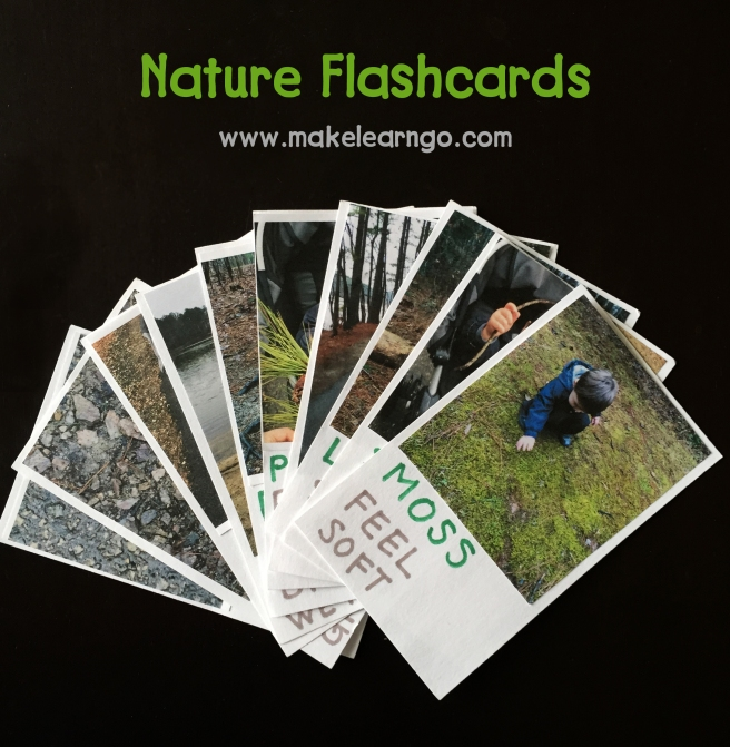 Nature Flashcards